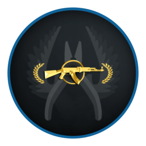 PRIME CS GO Master Guardian 2 Ranked Smurf Account