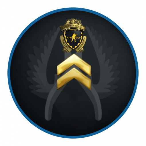 PRIME Private rank 2 With Loyalty Badge