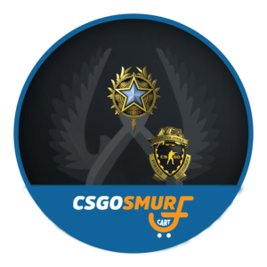 PRIME GN2 | 175 HOURS | 2020 SERVICE MEDAL | LOYALTY BADGE
